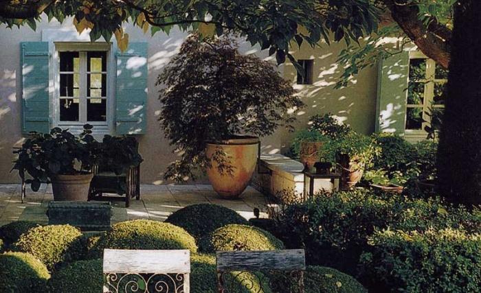 Maison de rêve à Saint Rémy de Provence : 2004-MonJardin5